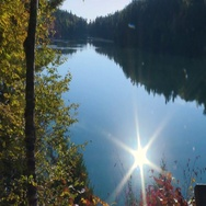 Calm lake with fall colours in Gatineau Park Stock Footage