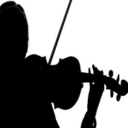 Woman fiddler playing the viola. Close-up. Silhouette Stock Footage
