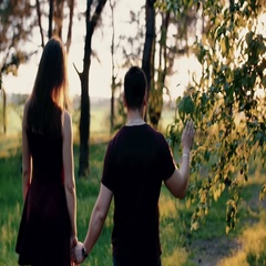 Back view of a happy couple walking in the forest holding hands at the sunset Stock Footage