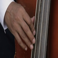 Upright Bass Playing Close Up Stock Footage