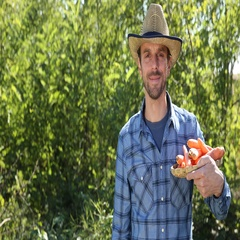 Happy Confident Farmer Man Holding Carrots Market Products Look Camera Smiling Stock Footage