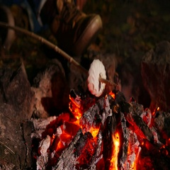 4K .Roasting Marshmallows At Camp Fire. Outdoor life Stock Footage