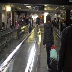 Moving walkway pedestrain escalator at Newark Airport, passengers with luggage Stock Footage