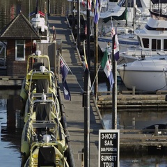 Static view of boat harbor in Victoria Stock Footage
