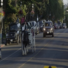 Horse drawn carriage going through traffic Stock Footage