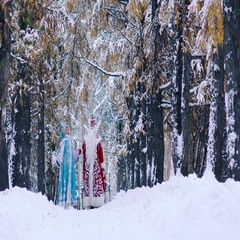 Two New Year characters walking in winter forest Stock Footage