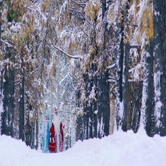 Father Frost and Snow Maiden going on a footpath in snowy forest Stock Footage