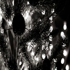 Christmas Decoration Black And White Theme Stock Footage