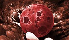 Cells, bacteria or virus Stock Illustration