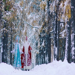 Ded Moroz and Snegurochka walking together in beautiful forest at Christmas Eve Stock Footage