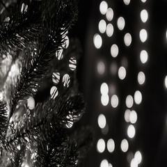 Christmas Tree With Bokeh Lights Black And White Theme Stock Footage