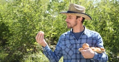 Optimistic Handsome Farmer Man Holding Common Onion Vegetables Pile Show Ok Sign Stock Footage