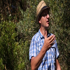 Italian Farmer Man Talking in Olive Orchard Organic Farming Concept Presentation Stock Footage
