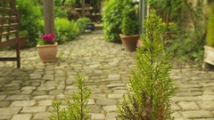 Garden Path with flower pot Stock Footage