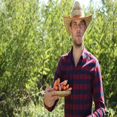 Handsome Farmer Man Presentation Hold Carrots Market Product and Check Quality Stock Footage