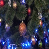 Cat sitting on a Christmas tree Stock Footage
