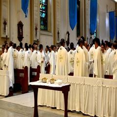 Roman Catholic priests gesture peace greetings Stock Footage
