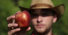 European Peasant Man Examining and Showing to Camera an Attractive Bio Red Apple Stock Footage