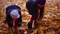 Two beautiful little girls playing with leaves in autumn evening Stock Footage