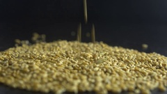 Pouring oats grain. eco food Stock Footage