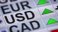 United States dollar. Up. Looping. Stock Footage