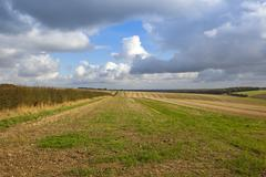 Rain clouds over stubble fields and hedgerows Stock Photos