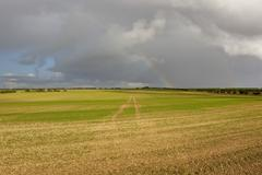 Cultivated land with rainbow Stock Photos