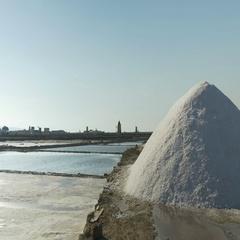 Trapani Saltpans Salt Harvest Stock Footage