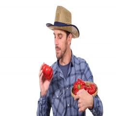Happy Farmer Man Quality Check Red Pepper Optimistic Show Ok Sign Hand Gesture Stock Footage