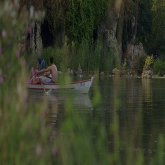 Row boating lovers rowing on Lac Daumesnil, Paris Stock Footage