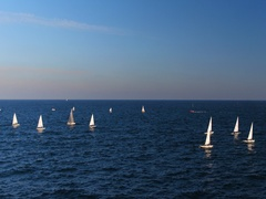 Aerial view of Sailing boats competing in the regatta at sea Stock Footage