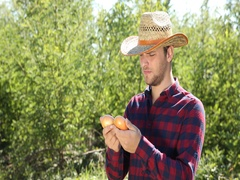 Optimistic Farmer Man Examining Common Onion Show Thumb Up Sign Looking Camera Stock Footage
