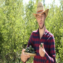 Agriculturist Man Hold and Examine Cucumbers Look Camera Organic Farming Concept Stock Footage