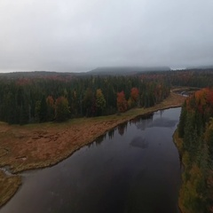 Maine Forest, Overhead Flyover of Winding River I, Autumn Fall, Aerial Stock Footage