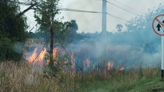 The flames of a brush fire approach a road side. Stock Footage