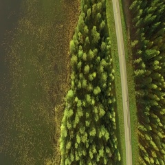 Vertical aerial shot following a small highway in forest landscape by a Nordic Stock Footage