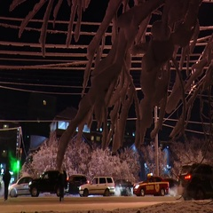 Snow-covered tree branch and passing cars in the late evening, tamelapse. Stock Footage