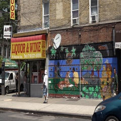Nostrand Avenue in Brooklyn Liquor Store Stock Footage