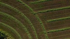 Drone shot of a cultivated field Stock Footage