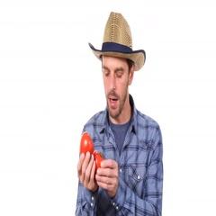 Confident Gardener Man Talk Production Report Holding Organic Garden Red Tomato Stock Footage
