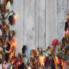 Top view of Dried flowers with Christmas lights on wooden table background. Stock Footage