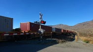 Railroad container train, level crossing, sunny autumn afternoon MS Stock Footage