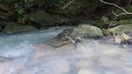Coast of the Agura river Stock Footage