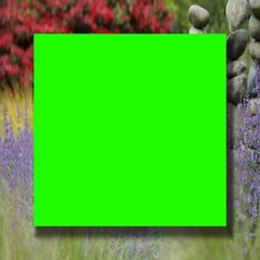Green screen on colorful garden background Stock Footage