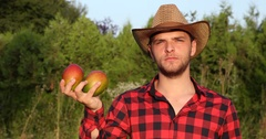 Serious Agriculturist Man Posing Holding Bio Mango Fruits Looking Camera Rancher Stock Footage