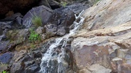 Mountain stream with clear water. Gran Canaria. Spain Stock Footage