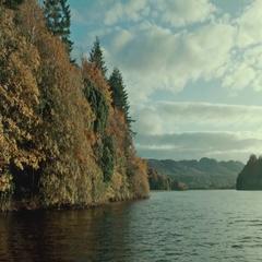 Autumn Riverside Tracking Shot Stock Footage