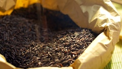 Some black rice grains in a paper food bag on the table. Stock Footage