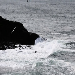 Sea Waves Hitting Against Black Lava Shore Oregon Slow Motion Stock Footage