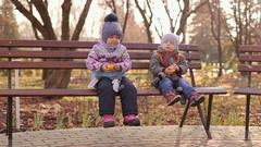 Two small children eat the tangerines. Christmas eve. Kids eat oranges. Stock Footage